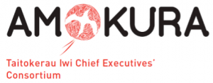 Amokura logo